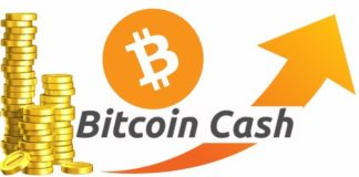 Bitcoin Cash Review - besticoforyou