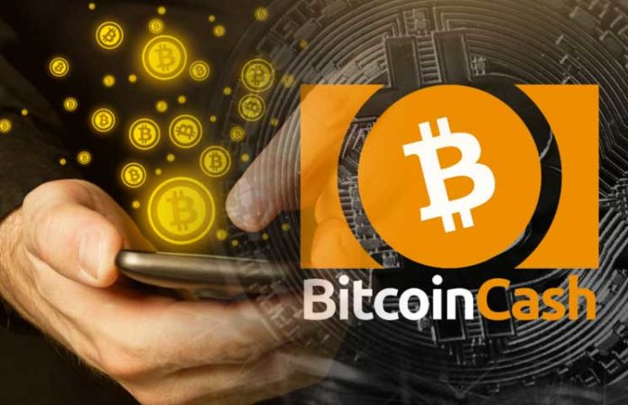 Bitcoin Cash review-besticoforyou today