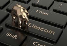 comprehensive Litecoin Review- besticoforyou