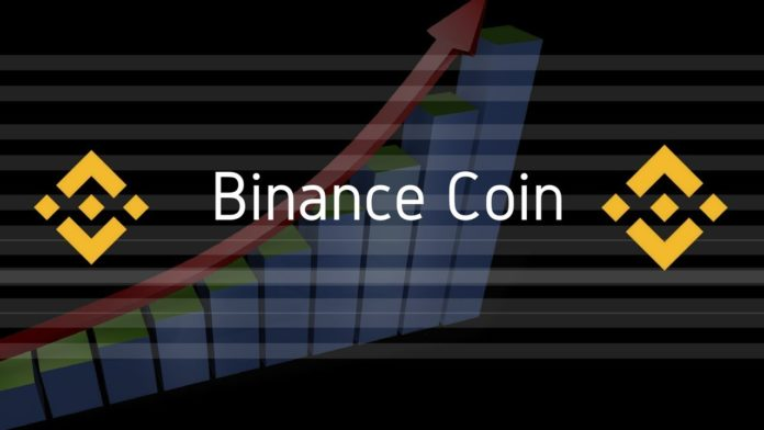 Binance coin review